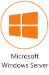 Microsoft Windows Server Consultant